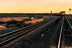 Train (Richard Mart1n) Tags: train travel porthedland abstract art sepia westernaustralia australia nikon d5000