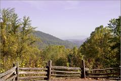 Fall in the Smokies (eraut) Tags: fall smokies smokymountains gatlinburg tn fence canon70d canoneos70d tamron1750mmf28 mountains wilderness autumn