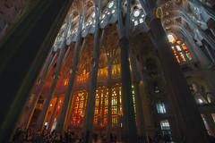 NH0A3591s (michael.soukup) Tags: barcelona sagradafamília sagrada familia basilica church stainedglass color colorful windows nave interior gaudi churchoftheholyfamily catholicchurch artnouveau architecture neogothic spain catalonia