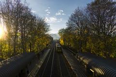 14:50 Hadrian Road.... (Moonbags) Tags: metro tynewear northtyneside wallsend autumn convergance sony a77 sigma1750mm