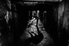 feeding cats (Dave Boam) Tags: marrakesh morroco monochrome cat alley blackandwhite shadow