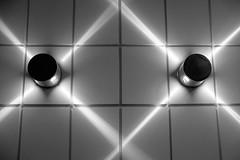 X light lines
