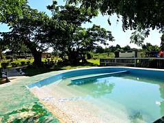 third pool (razel.mella) Tags: sabetohotsprings mudbath hotspring fiji nadi