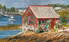 Bailey Island, Maine (pandt) Tags: maine baileyisland lobster coast coastal water ocean harbor boat buoy bouyant fishing seaweed sky outdoor building shack architecture boats red