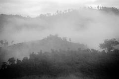 Laos : Foggy (foto_morgana) Tags: analogphotography analogefotografie asia blackwhitephotography ilfordxp2 indochina landscape laos lightroom mountainous nikoncoolscan outdoor panoramic photographienoiretblanc photographieanalogue scenic travelexperience vuescan zwartwitfotografie