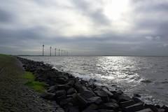 Windy weather (avista) Tags: ijsselmeer urk nederland thenetherlands wind autumn herfst clouds sun lakeijssel freshwater zeiss 35mm landscape water wolkenlucht refelction windmolens 6beaufort