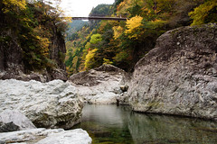 24Mitarai Valley (anglo10) Tags:   japan    valley  bridge  autumnleaves  river