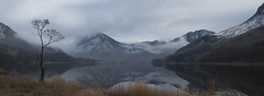 Buttermere revisited (Explored) (Neil W2011) Tags: nikon d7000 landscape lakedistrict nationalpark cumbria buttermere reflections tree winter snow mist