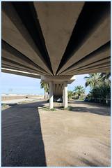 Bajo el puente (patosincharco) Tags: puente vigas