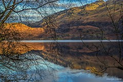 Loch Lomond (MC Snapper78) Tags: scotland nikond3300 lochlomond mountains reflections reflecting reflection reflect landscape scenery scenic marilynconnor