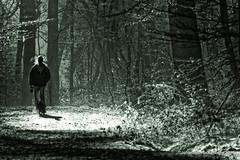 Erleuchtung (grafenhans) Tags: sony alpha 700 alpha700 a700 black white schwarz weiss wald winter sonne