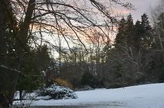 (careth@2012) Tags: winter snow scenery scenic scene view trees sunset landscape