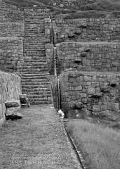 Tipn, Peru (bellydanser) Tags: bw blackandwhite monochromatic peru ruins inca stonework stone ancient tipon floatingstairs stairs steps stonesteps water waterfall terrace floatingsteps