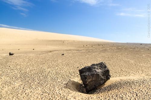 They just look like me... - Las dunas de Corralejo - Fuerteventura 2015