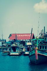 Auswahl-6020 (wolfgangp_vienna) Tags: thailand island asia asien harbour insel ko seafood hafen trat kut kood kokood kokut kohkut aoyai