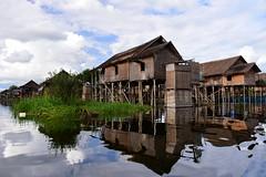 Nampan Pokpa, Inle lake,  Myanmar D810_1030 (tango-) Tags: burma myanmar birman birmania   nirmania  inlelakeburma lagoinlemyanmar  inlelakevillages