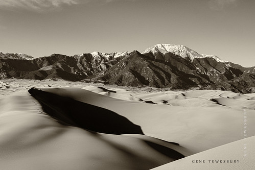 Sand Dunes in Sepia II