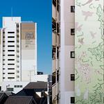朝霞浜崎団地大規模改修の写真