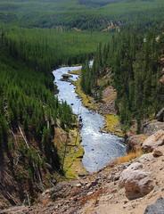 Gibbins River Valley Below Gibbon Falls - Yellowstone National Park, Wyoming (danjdavis) Tags: nationalpark valley yellowstonenationalpark yellowstone wyoming gibbonriver gibbonfalls