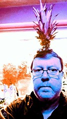 Pineapple Hairpiece (Smabs Sputzer) Tags: stupid self portrait artistic by vos astrid grismeisje