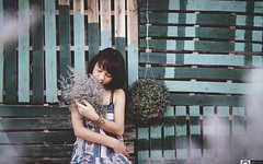 3 (Smilie FotoGrafer( +84 90 618 5552 )) Tags: fashion cafe c ph nh p man women hoa kh flower wood wooden pallete snow winter