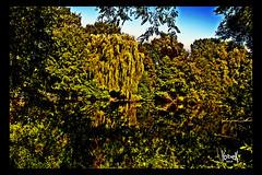 "Bonanza Park #2 ""Dusk is coming"" (YobeK) Tags: scherpgesteld yobek yobekakajohankuhlemeier yobekbringeroflight art artwork achterhoek bonanzapark canon300d photoshop yellow brown green dusk"