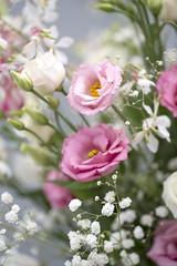 Lisianthus bouquet (photoart33) Tags: flowers pink white bouquet stilllife lisianthus gypsophila gaura dof soft pretty