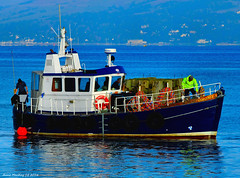 Scotland Greenock divers at work on a pier extension 25 October 2016 by Anne MacKay (Anne MacKay images of interest & wonder) Tags: scotland greenock divers work pier xs1 25 october 2016 picture by anne mackay boat stroma a