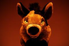 014-The Desert Huntress #1 (Univaded Fox) Tags: shenzi hyena the lion king plush disney store photography experiment dramatic lighting sunrise filters photoshop univaded
