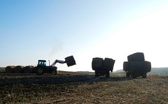 7 degree temps for today..... (Jeannette Greaves) Tags: 2016 hay bales moving fromad2rl hugh jeannette