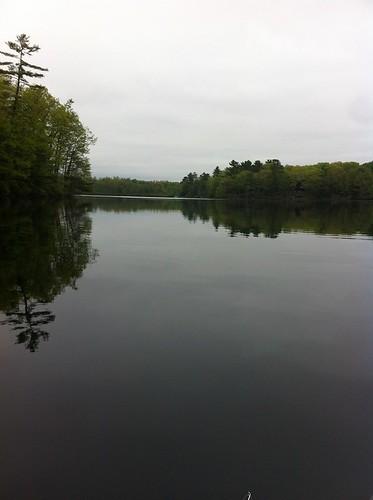 Ell Pond - www.amazingfishametric.com