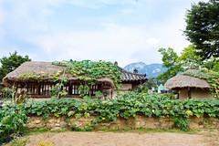 Seoul: Gyeongbokgung (stuckinseoul) Tags: photo asian  nationalfolkmuseum seoul asia sigma2470mmf28exdghsm photograph  southkorea city korean canoneos6d korea capital  kr