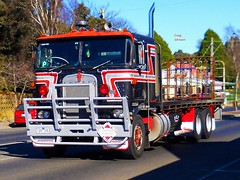 photo by secret squirrel (secret squirrel6) Tags: secretsquirrel6truckphotos craigjohnsontruckphotos kenworth mirboonorth peterstoitsetransport cabover classic stripes bigrig flickr photos spotlights