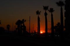 İzmir-Turkey (Betül DOĞAN) Tags: sunset sun turkey turquia puestadelsol palmas backlight izmir light luz landscape outdoor