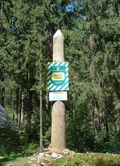 1000 m-es tszf. magassg (ossian71) Tags: ukrajna ukraine krptalja krptok carpathians erd forest