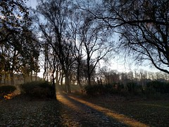 Maxwell Park (Martin Deutsch) Tags: park glasgow maxwellpark shadows lowsun