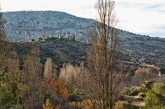 Nacimiento Rio Mundo JAL0030 (dedaimiel) Tags: riomundo naturaleza paisaje landscape nature jalriomundo