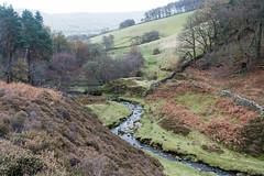 NB-2.jpg (neil.bulman) Tags: kinder edale grindsbrook brooke stream peakdistrict nature water derbyshire outdoors penineway countryside highpeak hopevalley rambling highpeakdistrict england unitedkingdom gb