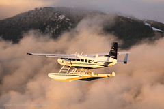 Passing Grouse (Jason Pineau) Tags: seair cessna c208 caravan vancouver coalharbour cyhc bc britishcolumbia floatplane seaplane cflac