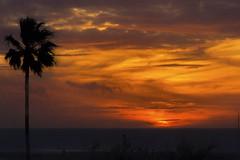 Sunset Conil de la Frontera (suzanne~) Tags: sunset sea ocean atlantic conil spain andalusia