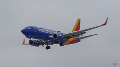 Southwest N564WN (Brian Stewart Photography) Tags: southwest plane airliner airport midway chicago airplane aircraft