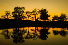 Double (Costigano) Tags: sunset silhouette reflection water river tree canon eos scenic scenery waterscape