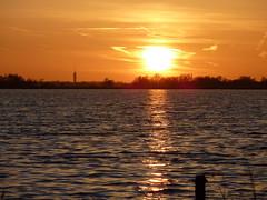P1020294 (Momo1435) Tags: nederland groene hart alphen meije aarlanderveen ter aar