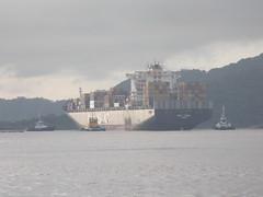 Navio deixando o rio com um rebocador a frente e outro atrs (JODF) Tags: praia navegantes santacatarina gaivota quadra bemtevi