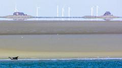 The Seal (ToDoe) Tags: sandbar seal watt sandbank schleswigholstein hallig seehund windkrafträder