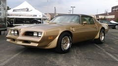 Trans Am Nationals 2015 (restoreamusclecar) Tags: am trans nationals 2015