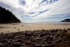 Driftwood, Oswald West State Park, Oregon (vambo25) Tags: beach oregon coast sand pacific driftwood oswaldweststatepark
