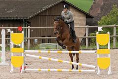 DSC06632_s (AndiP66) Tags: springen ruswil buholz 2015 pferd horse schweiz switzerland kantonluzern cantonlucerne sursee concours wettbewerb horsejumping springreiten pferdespringen sony sonyalpha 77markii 77ii 77m2 a77ii alpha ilca77m2 slta77ii sony70400mm f456 sony70400mmf456gssmii sal70400g2 andreaspeters menznau luzern ch vereinsspringen september