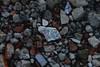 Mai arrendersi (BerrutiGiulia) Tags: flower pietre dettagli fiore sassi bellezza macerie piastrella bergolo