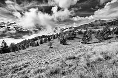 Malga Colo (Christian Tomasi) Tags: bw colo silver landscape 14 pro mm malga samyang efex roncegno christiantomasi christiantomasitrento